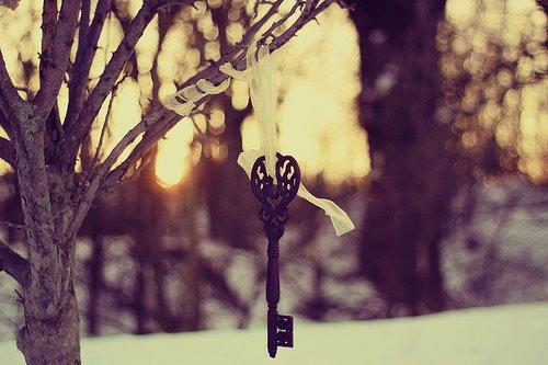 Key Hanging Tree